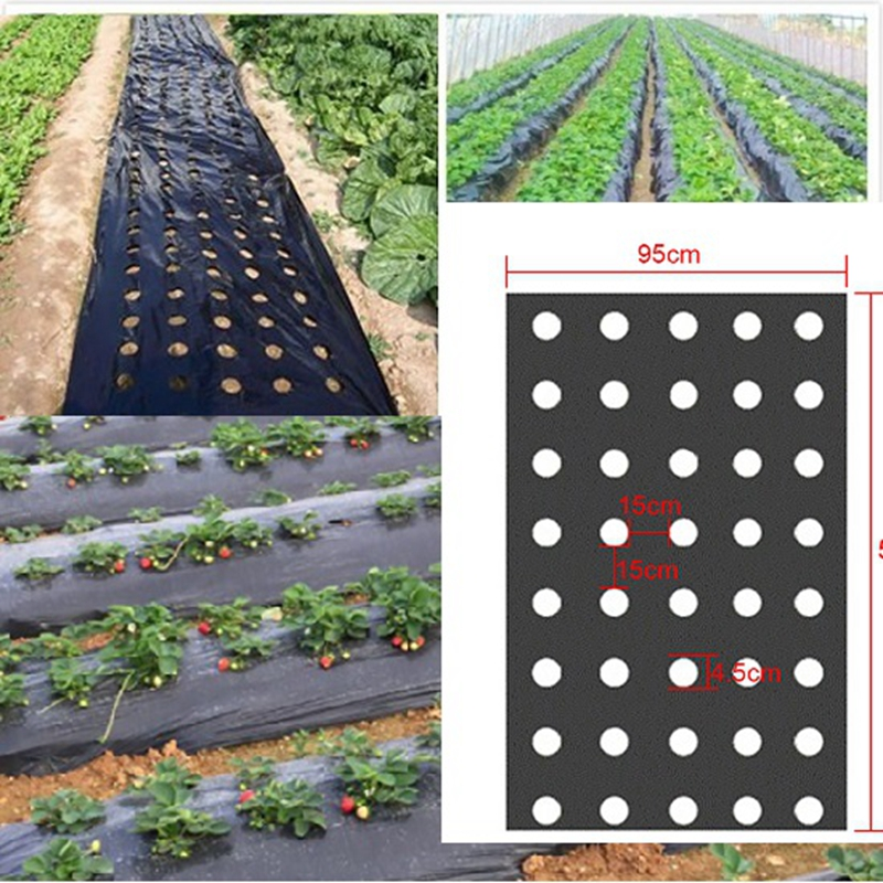5Holes 95cm*50m 0.02mm Black Garden Vegetable Membrane Agricultural Plants Mulching Seeding Plastic Perforated PE Film(China)