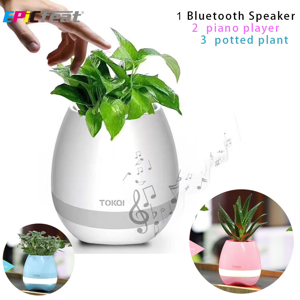 plants and music - 1001×1001