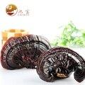 [GRANDEZA] Todo ling zhi Secas Lingzhi Selvagem Roxo cogumelo reishi Ganoderma Lucidum orgânica Chá de Ervas 500g