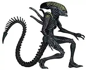 Aliens NECA Série 7 Da Rede AvP Aliens vs Predator Guerreiro Action Figure coleção toy
