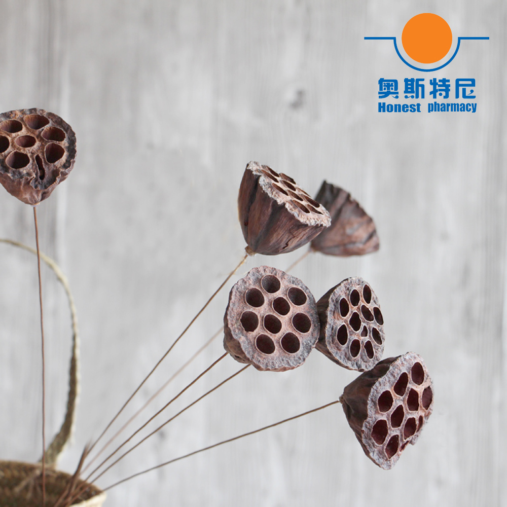 Online buy wholesale lotus flower size from china lotus flower 6pcs dried naturally flower bouquets small size naturally dired lotus seedpodseedpod of the lotus without seed dhlflorist Image collections