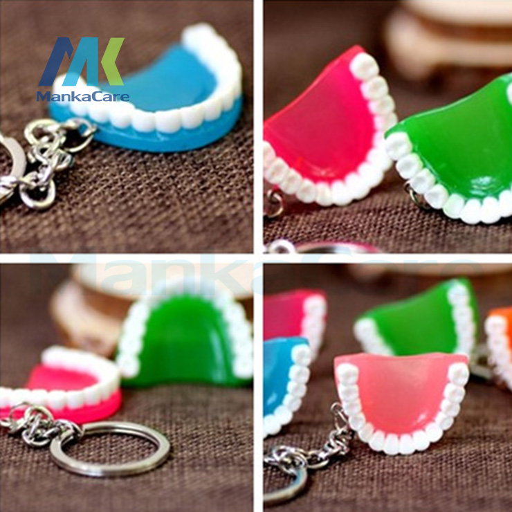 12 Pcs Simulation Teeth / Gums Keychain Creative Gifts Fashion Gift Small Business Dental Hospitals And Clinics