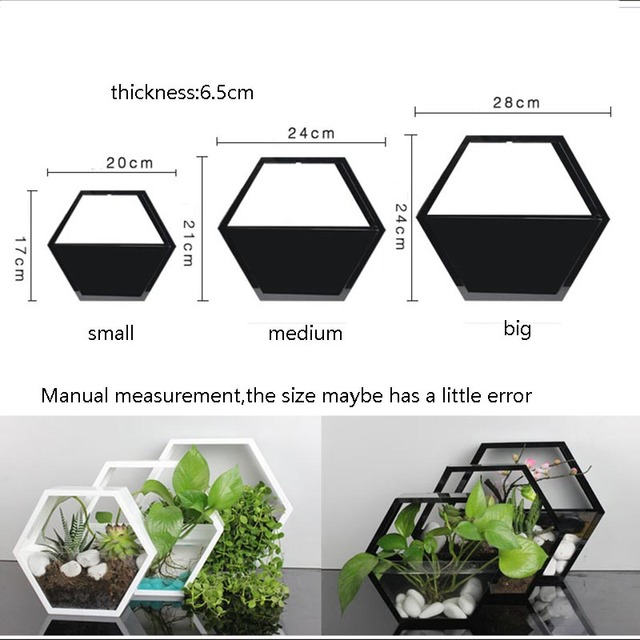 Brief Solid Color Acrylic Wall Vase Hydroponics Plant Holder Flower Pot Hanging Vases for Home Decor Crafts Bonsai Planter Art 2