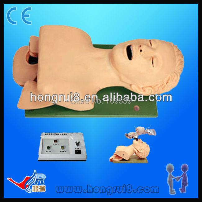Electric Traches Intubation Model electric traches intubation model
