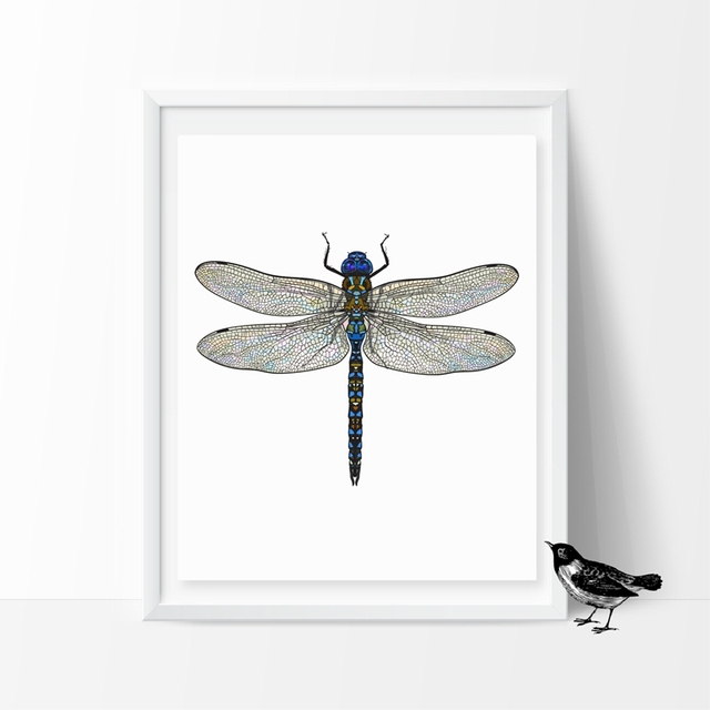dragonfly nature painting original pin illustration home art watercolor for decor ooak