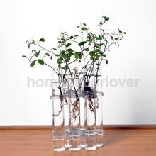6 Glass Tubes Shape Hanging Hydroponic Flower Plant Vase Terrarium Container