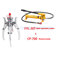 New Arrival Hydraulic Puller 30T High Quality Practical Hydraulic Tools FYL 30T Split Puller + CP 700 Manual Pump Hot Selling