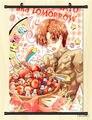 Home Decor Японии Аниме Axis Power Hetalia Косплей Плакат Прокрутки P