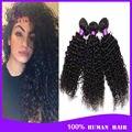 Malásia cabelo encaracolado kinky 3 pacotes grau 6a malásia profunda curly virgem cabelo peruca não transformados tecer cabelo humano de 100 marcas
