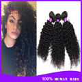 Malaysian kinky curly hair 3 bundles grade 6a Malaysian deep curly virgin hair wig unprocessed 100 human hair weave brands