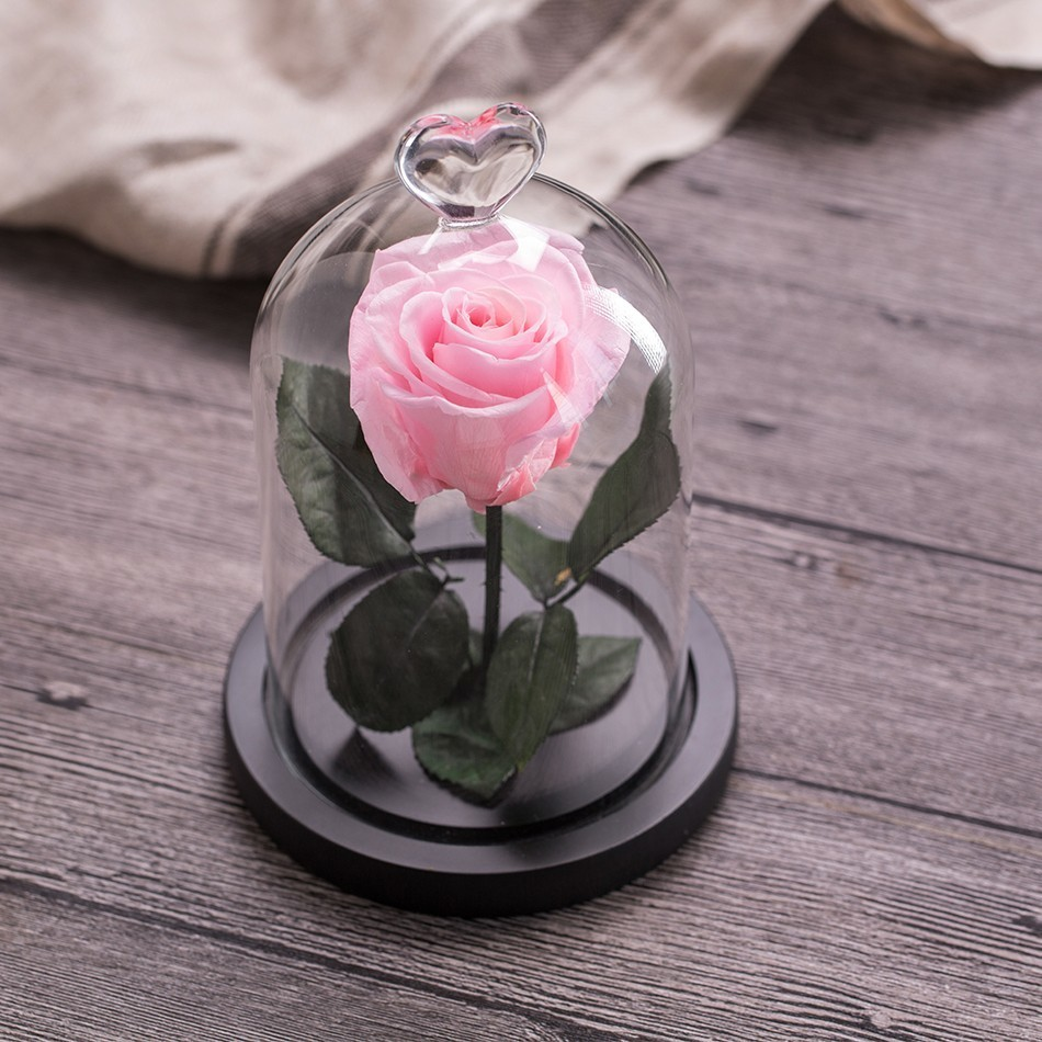Вечный цветок розы с любовью стекло черный чехол искусственный цветок подарок на год Валентина Рождество Gif хорошее украшение дома - Цвет: Pink Rose