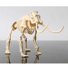 Kids Toys Plastic 3D skeleton Triceratops/stegosaurus/velociraptor/mammoth DIY Assembled Dinosaur Models For Children Kit Toy