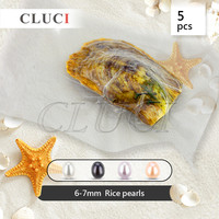 CLUCI 5pcs freshwater pearls 6-7mm rice/oval shaped pearl oysters individually wrapped, best wedding/anniversary/birthday gifts