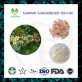 GMP Certified analgesia Boswellia extrato 65% ácido boswellic 200 gramas de Alta qualidade frete grátis Anti-rugas efeito