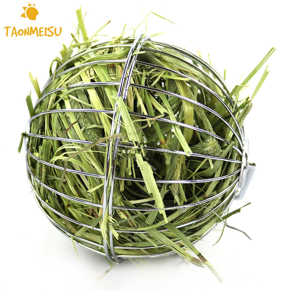 Small Pet Feeding Tool Stainless Steel Round Sphere Grass Collecting Ball For Feeding Chinchilla Rabbit And Guinea Pig