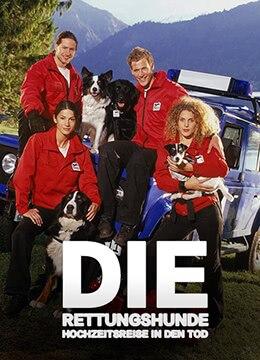 《侠肝义犬》2003年德国电影在线观看