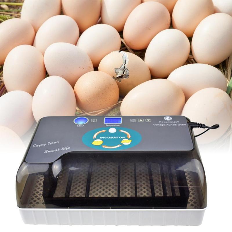 Couveuse automatique de caille d'incubateur d'oeufs de poulet de Machine d'écloserie de ferme