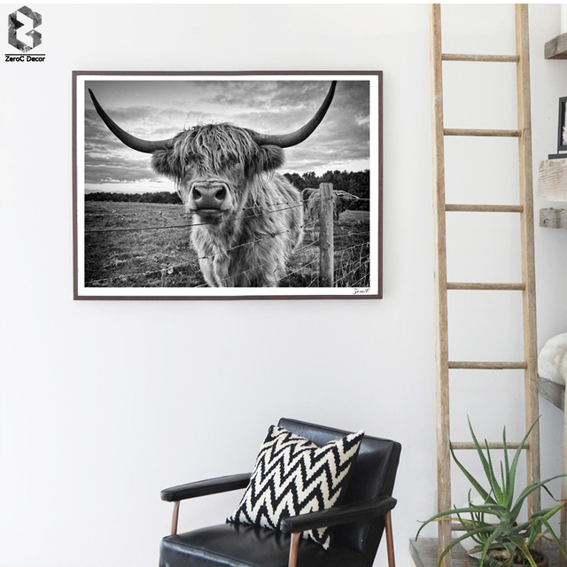 Australia wall art posters and prints black white highland cow canvas painting picture for living room