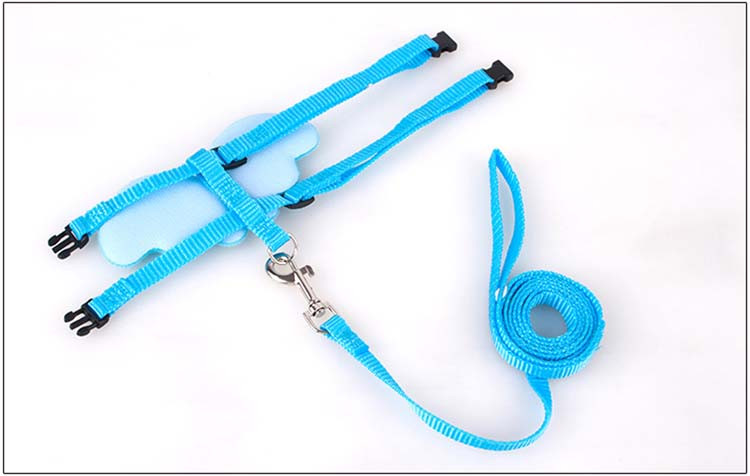 Cute Angel Pet Dog Leashes and Collars Set Puppy Leads for Small Dogs Cats Designer Wing Adjustable Dog Harness Pet Accessories Wholesale5