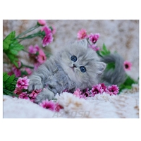 Diamond Embroidery New 3D Diamond Painting Cross Stitch Cute Kitten Kit Home Decor Full Square Rhinestones