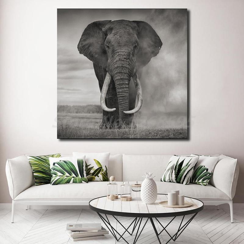 Wild Elephant Print