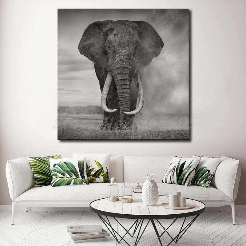Wild Animals elephant Africa nature posters