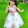 Teenage Girl 3D Floral Dresses Summer 2017 Children's Clothing Rose Embroidery Chiffon Dress Kids Princess Dress For Girls