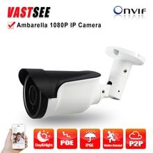 Full HD IP camera 2mp 1080p poe onvif2.4 SONY imx290 1920*1080 outdoor Ambarella waterproof ip66 Bullet 3MP HD Lens Night Vision