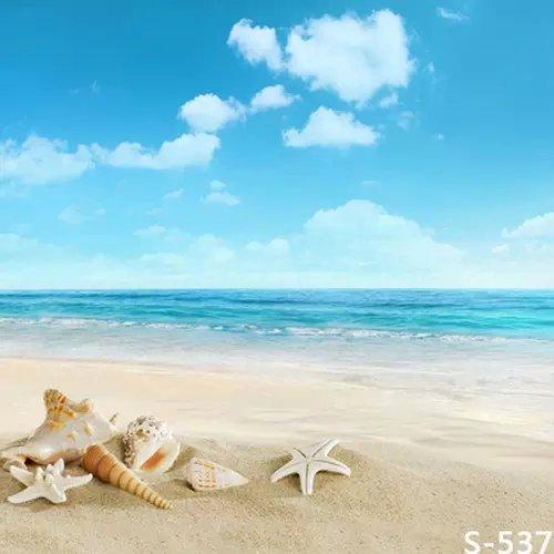 Matrimonio Spiagge Esotiche : บลูสกายมหาสมุทรวิวแซนดี้เชลล์สำหรับภาพถ่ายทารกpropsกล้อง