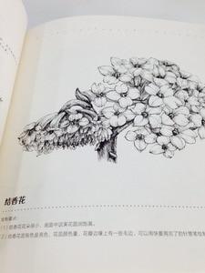 Image 3 - Libro de pintura de dibujo de línea china: Technigues de dibujo para 87 flores famosas lápiz blanco negro boceto libro de dibujo