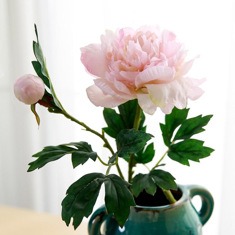 Peony flower (15)