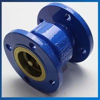 Good Quality DN40 Cast Iron Flanged One way Valve