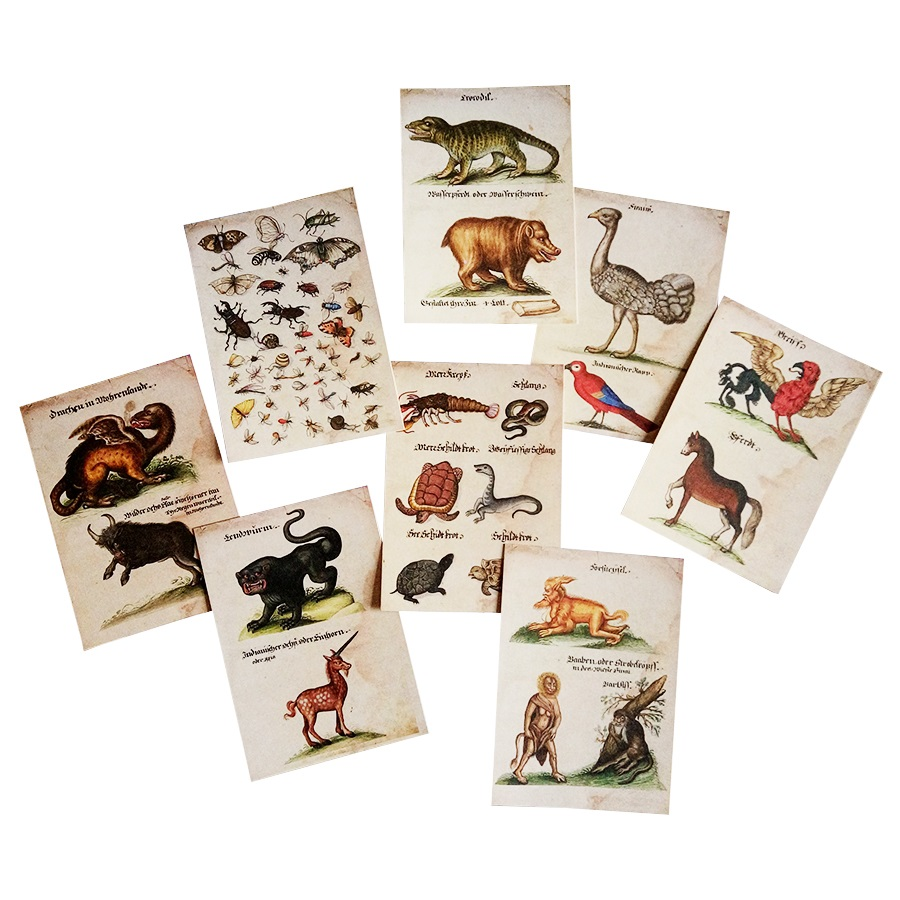 16 Pcs/lot ( 1pack ) New Retro Cartoon Animal Postcard With Kraft Package Lovely Rare Animals Classic Children Greeting Cards
