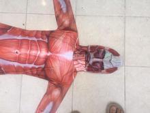 Attack On Titan Men Cosplay Halloween Costume