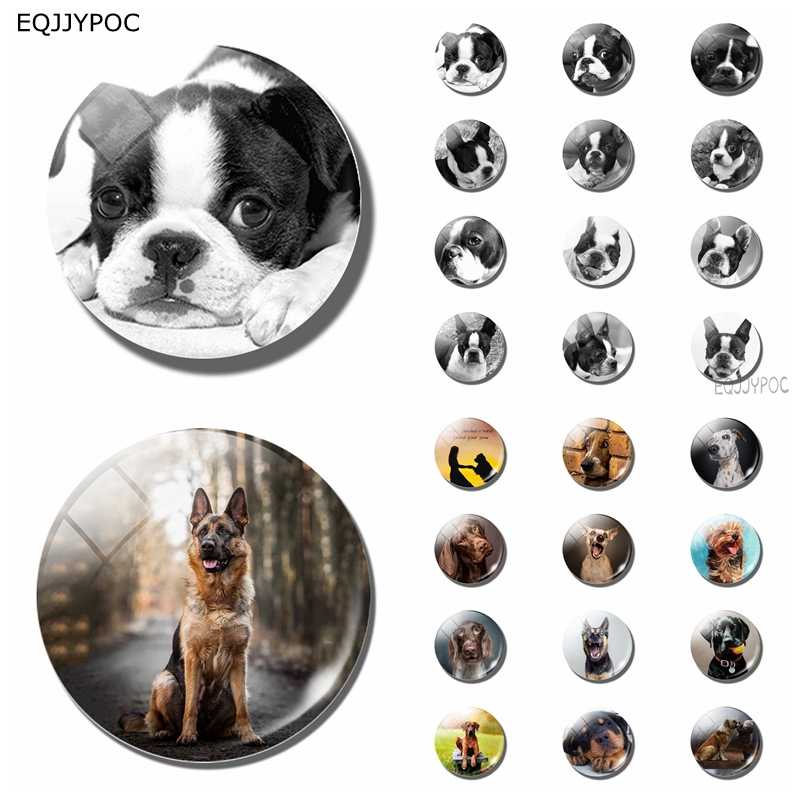 12pcs Black White Dog 25 MM Fridge Magnet Glass Note Holder Decoration Refrigerator Magnetic Sticker Home Decor Cute Kids Gift