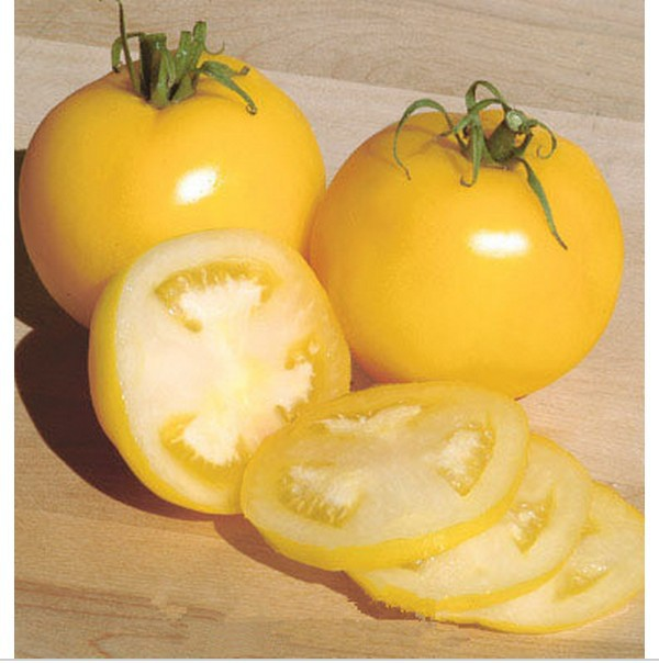 yellow fruits is tomato a fruit or a vegetable