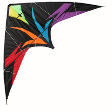 Professionelle Kite Assassin 1.8m Dual Line Professionelle Power Lenkdrachen Outdoor Sport Delta Kite Mit Fliegenden Werkzeugen