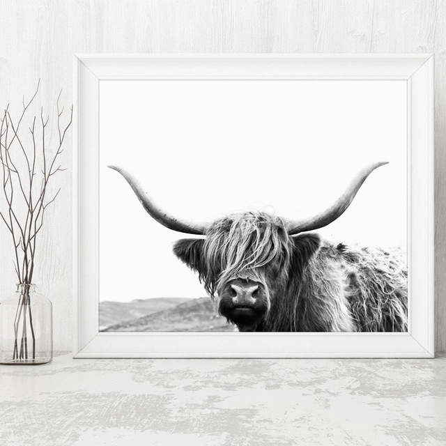 6e22b2d5ed9 Highland Cow Canvas Art Prints and Poster