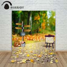 Allenjoy photographic background Woods road signs backdrops children boy summer customize 8x12ft
