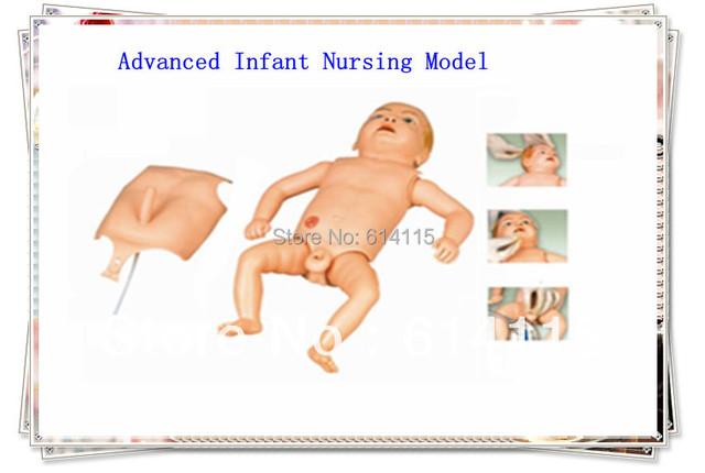 Venda direta da fábrica Avançada Infsing AUXILIARES de Ensino de Anatomia modelo tamanho Da Embalagem: 58*22*35 cm 1 set/lote Ensino modelAnatomica