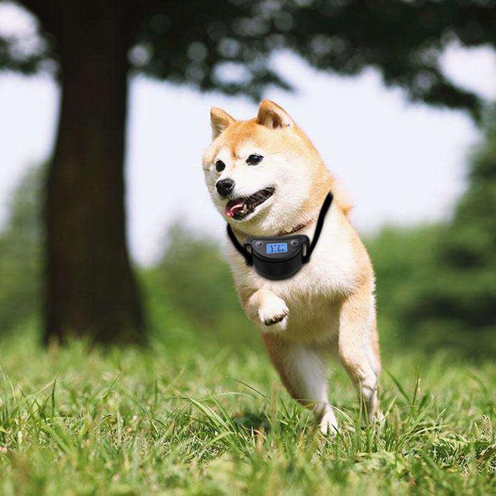 5 niveles de sensibilidad Collar eléctrico de entrenamiento para perros USB recargable Anti corteza ajustable Collar de entrenamiento para mascotas pantalla LCD lámpara de prueba
