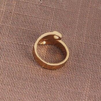 Dog Ring 6