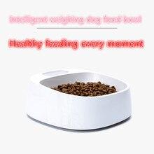 Pet smartbowl миска для собак, цифровая стойка для кормления, умная, называемая основной собакой, устройство для медленного кормления, чаша для питья comedro perro
