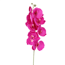 Orchid Flower Bouquet for Home Decor