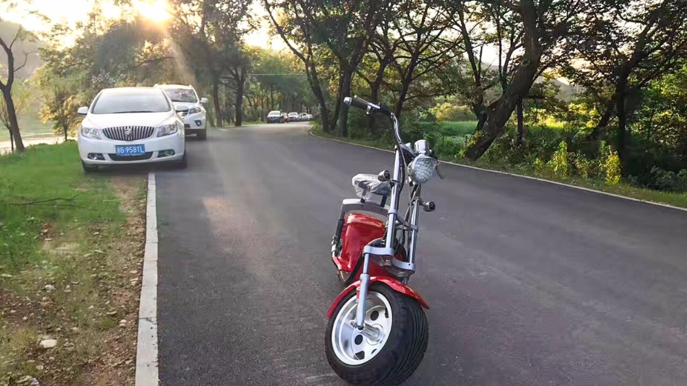 Free shipping e bike electric bike electric font b motorcycle b font scooter harley 1200W