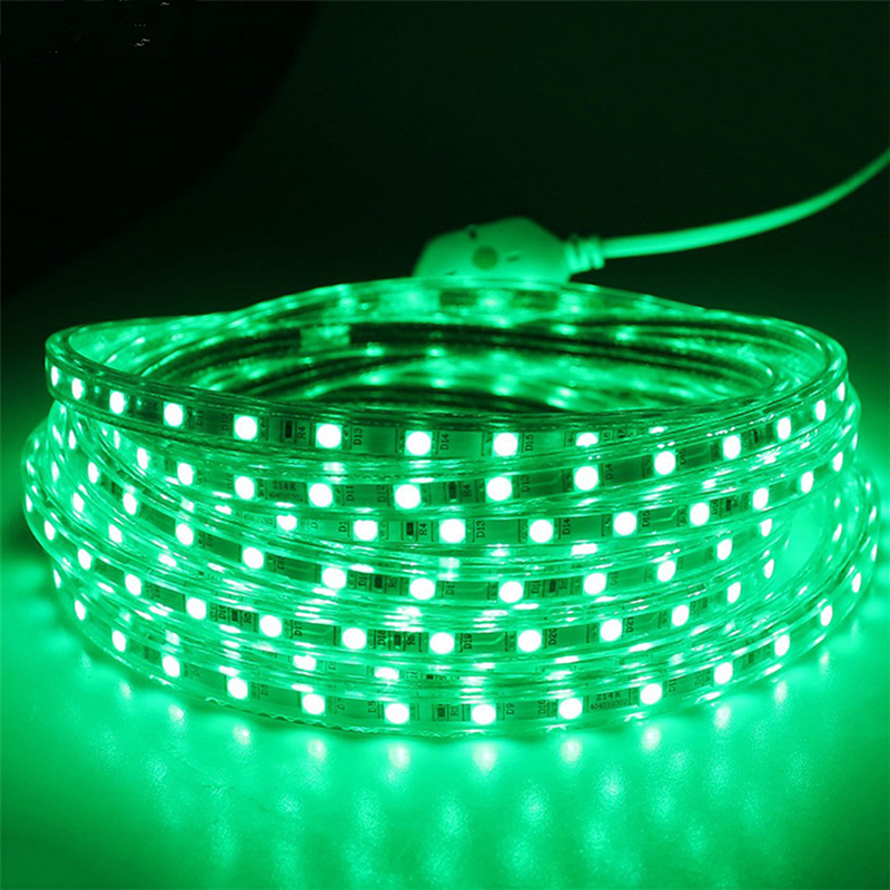 Hot LED Strip 5050 IP66 Waterdichte Flexibele licht Tape 220V lamp Outdoor String LED Touw 110V 100M met Gratis Power Adapter - 4
