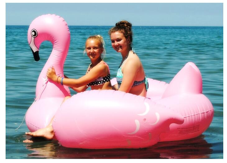 ФОТО Inflatable Boat Giant Swan Floating Pool float Toy Water Floating Bed boat Swim Ring Floating Row with Armrest Water Sports