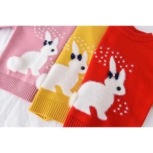 Image 5 - 2019 inverno outono da criança menina camisola de manga longa quente bebê meninas camisola crianças roupas meninas pulôver topo 2 4 anos coelho