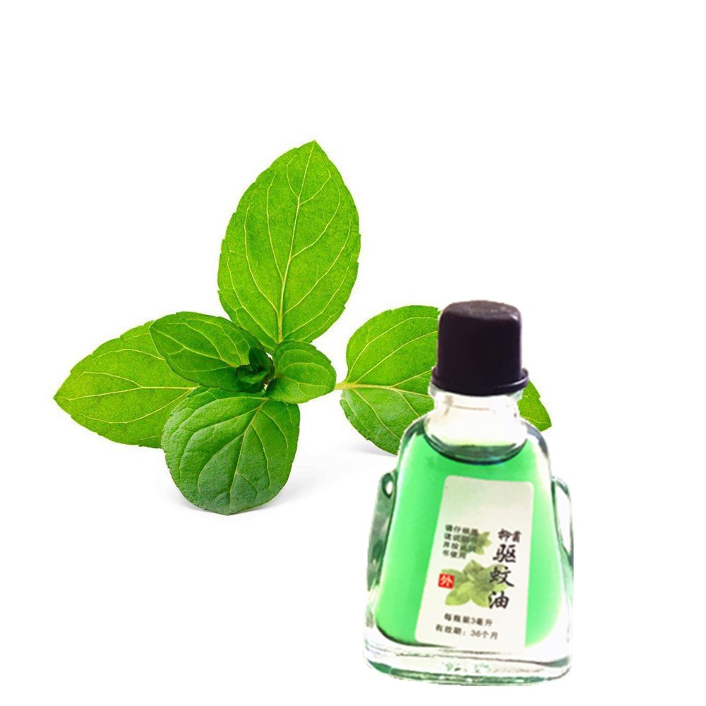 3ml Fresh Mint Cold Constipation Abdominal Distention Essential Oil Cheapest External Essential Oil