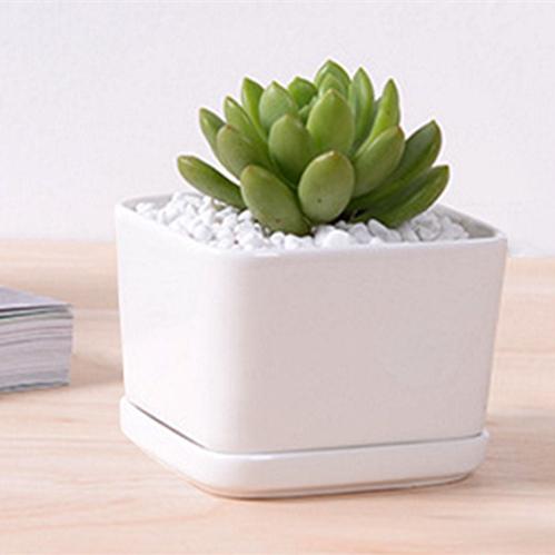 8.5cm Diameter Cube Shape Pure White Ivory Ceramic Mini Flower Pot for Succulent Plant Succulent Plant Small Bonsai Tray Pot